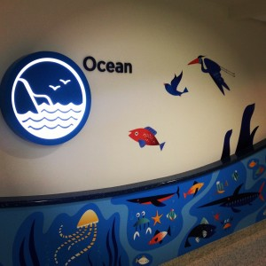 Ocean Zone Art