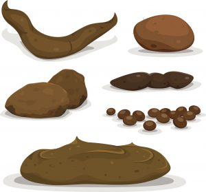 It S A Messy Topic But Let S Talk About Poop